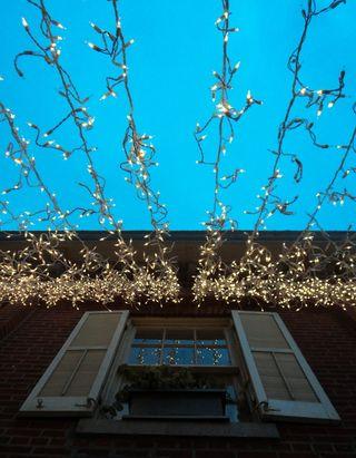 Christmas lights 113010