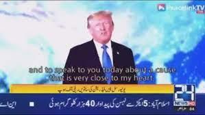 Trump moonie